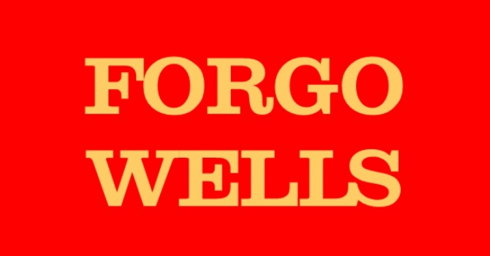 """Around the country, people are saying that we've had enough of Wells Fargo really doing everything it can to extract as much value out of our communities as possible, and we're fighting back,"" Saqib Bhatti, director of the ReFund America Project who also is working on the Forgo Wells campaign. (Image: ForgoWells.org)"