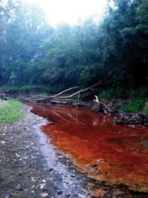 Fracking fluids spill into a creek in W. Va. in 2009. Photo: Ed Wade Jr. and Wetzel County Action Group, via Environment America Research & Policy Center.