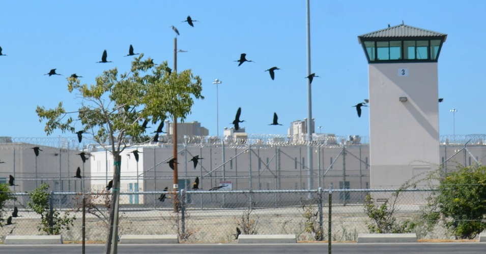 California Voters Pass 'Historic' Mass Incarceration Reform