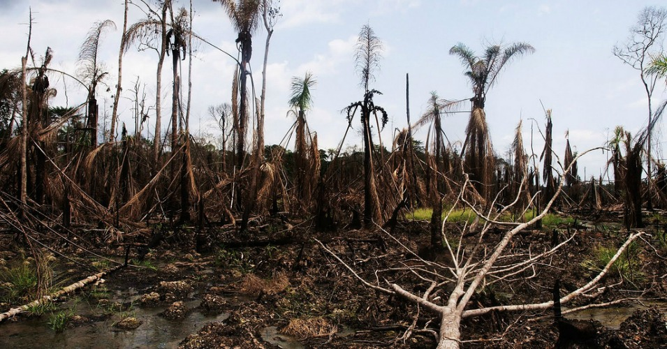 Is Oil A Fossil Fuel >> In Oil-Soaked Niger Delta, 'Avengers' Bombing Pipelines in Struggle for Compensation | Common ...