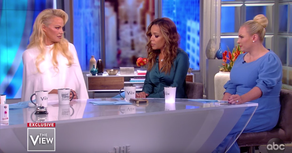 'A Breath of Fresh Air' as Pamela Anderson Takes Meghan McCain to Task On 'The View'