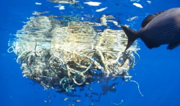 Newly Discovered Plastic Island Shows Global Epidemic