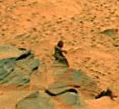 Life on Mars?: Searching for Signs in the Cosmos, and on Earth