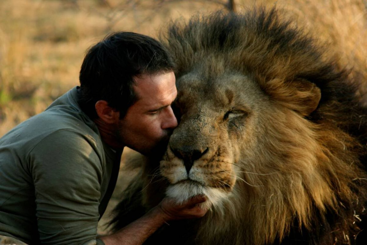 Image result for human and lion
