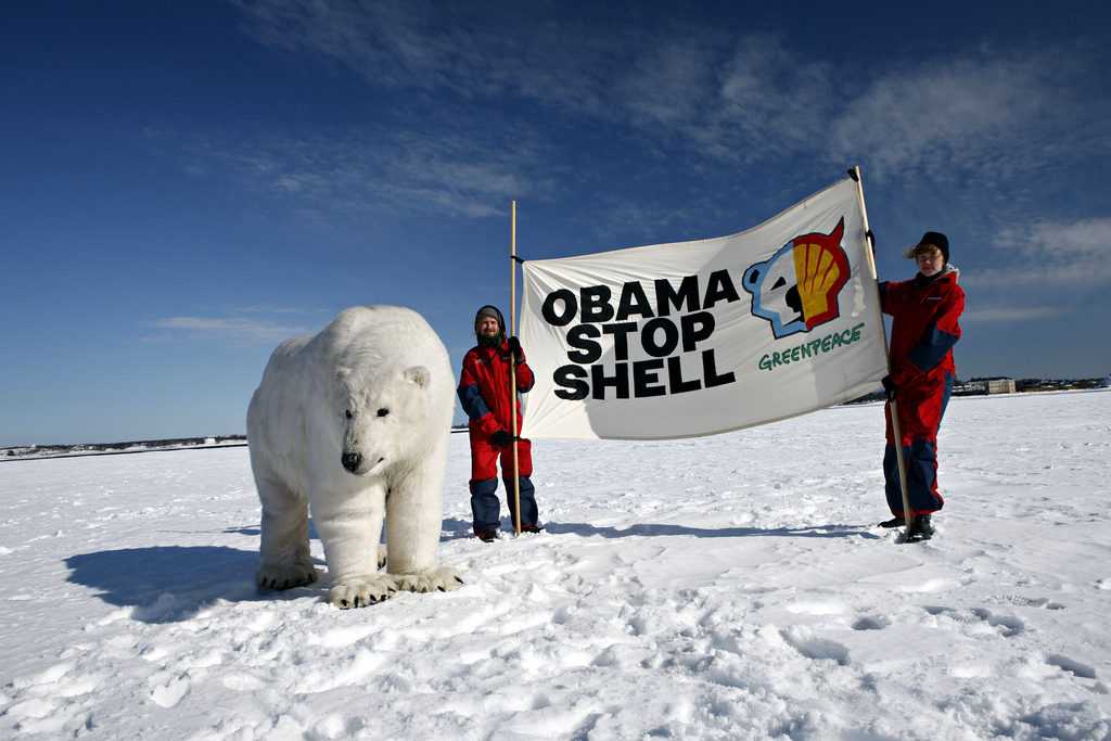 drilling for oil in the artic The arctic national wildlife refuge is important polar bear habitat but it's also caught in a battle for oil drilling.