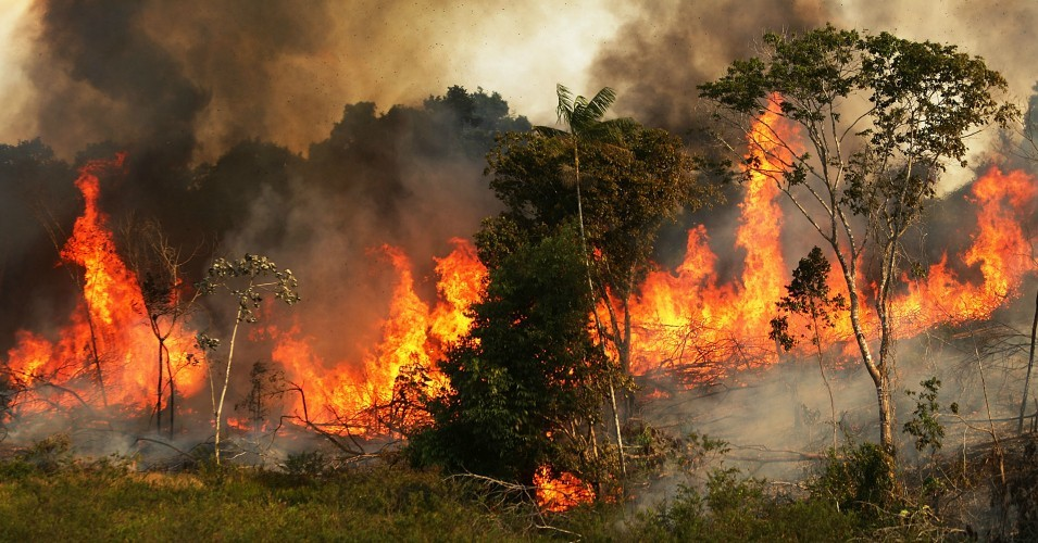 A fire burns trees next to grazing land in the Amazon basin in Ze Doca, Brazil. (Photo: Mario Tama/Getty Images)