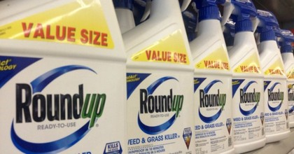 A jury in California has asked a judge to fully uphold their verdict, reached in August, that Monsanto was liable for $289 billion in damages to be paid to a groundskeeper who had developed cancer as a result of exposure to the company's weedkiller. (Photo: Mike Mozart/Flickr/cc)