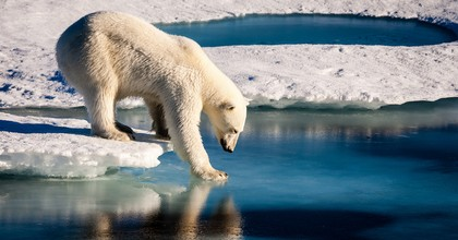 The Arctic is melting rapidly. Ice and glaciers are at record low levels in the North Pole. (Photo: NASA Flickr)
