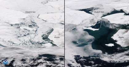 In March 2019, the Bering Sea had less ice than in April 2014. (Photo: U.S. National Oceanic and Atmospheric Administration)