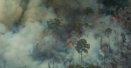 """The fires engulfing the Amazon rain forest are a sign that the Earth is approaching an environmental and ecological """"tipping point"""" that all of humanity must work together to avoid, the U.N.'s top biodiversity expert said Friday. (Photo: ©Victor Moriyama/Greenpeace)"""