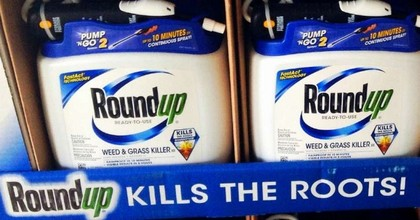 The active ingredient in RoundUp is glyphosate, which the World Health Organization classifies as a probable human carcinogen. (Photo: Mike Mozart/Flickr/cc)