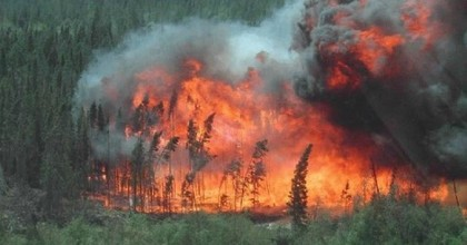 A rolling forest fire in Alberta, Canada, May 28, 2011. (Photo: Environment and Sustainable Resource Development/Government of Alberta)