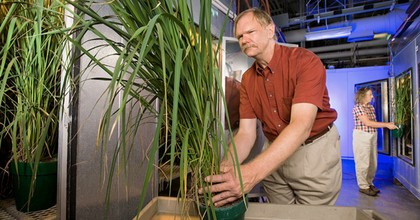 Plant physiologist Lewis Ziska quit the U.S. Department of Agriculture Friday. (Photo: Peggy Greb/USDA Agricultural Research Service via sciencenewsforstudents.org)