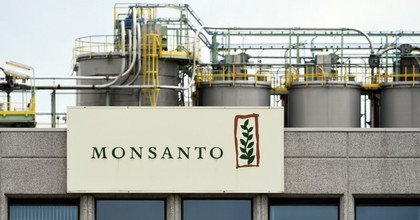 The non-profit U.S. Right to Know released new documents Thursday showing that the agrochemical company Monsanto assembled elaborate plans to counter findings about its relationships with scientists and universities, to discredit journalists, and to monitor critics. (Photo: John Thys/AFP/Getty Images)