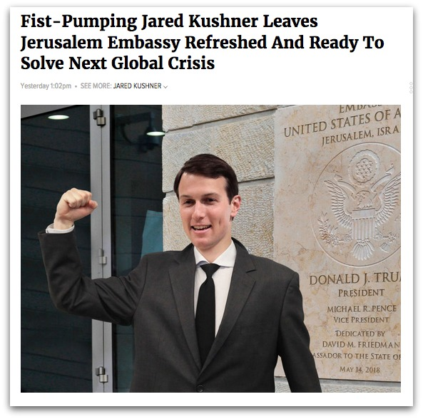 kushner_onion_4.5.jpg