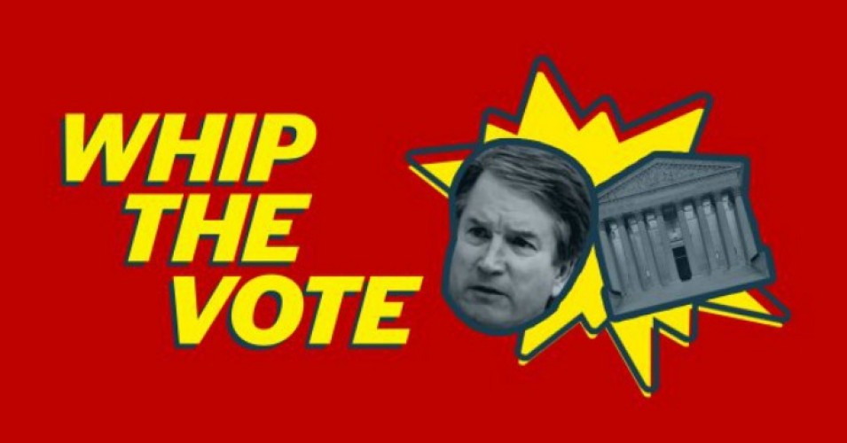 """Democratic senators should be united in opposition to Kavanaugh, instead of letting Republican senators ram through the confirmation of a nominee who was selected to protect the president from prosecution,"" progressive groups note on their new website. (Photo: WhipTheVote.org)"