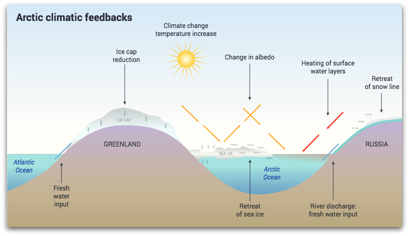 arctic climatic feedbackS