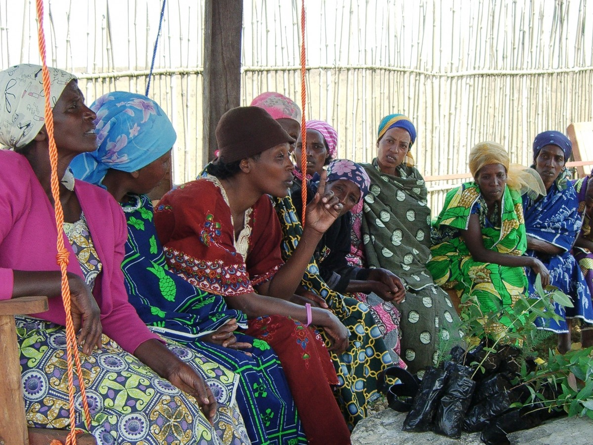 Neema Namadamu (third from left) leads a training in the Democractic Republic of Congo preparing women to plant local trees as part of reforestation and old growth protection efforts in the Itombwe rainforest. (Photo: WECAN International)