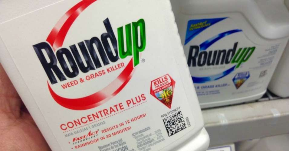 A federal judge in California ruled Tuesday that hundreds of cases filed by cancer patients against agrochemical giant Monsanto can proceed to trial. (Photo: Mike Mozart/Flickr/cc)