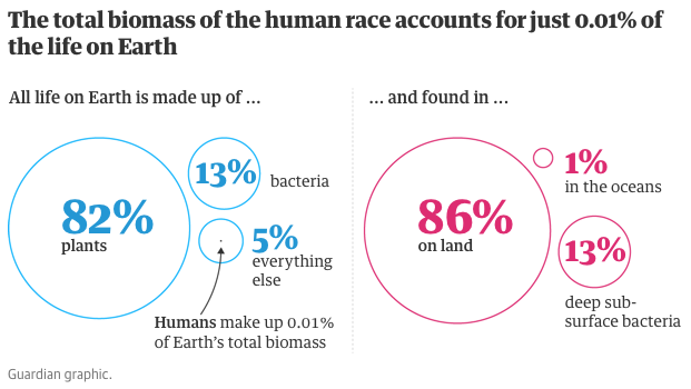biomass of humans v everything else