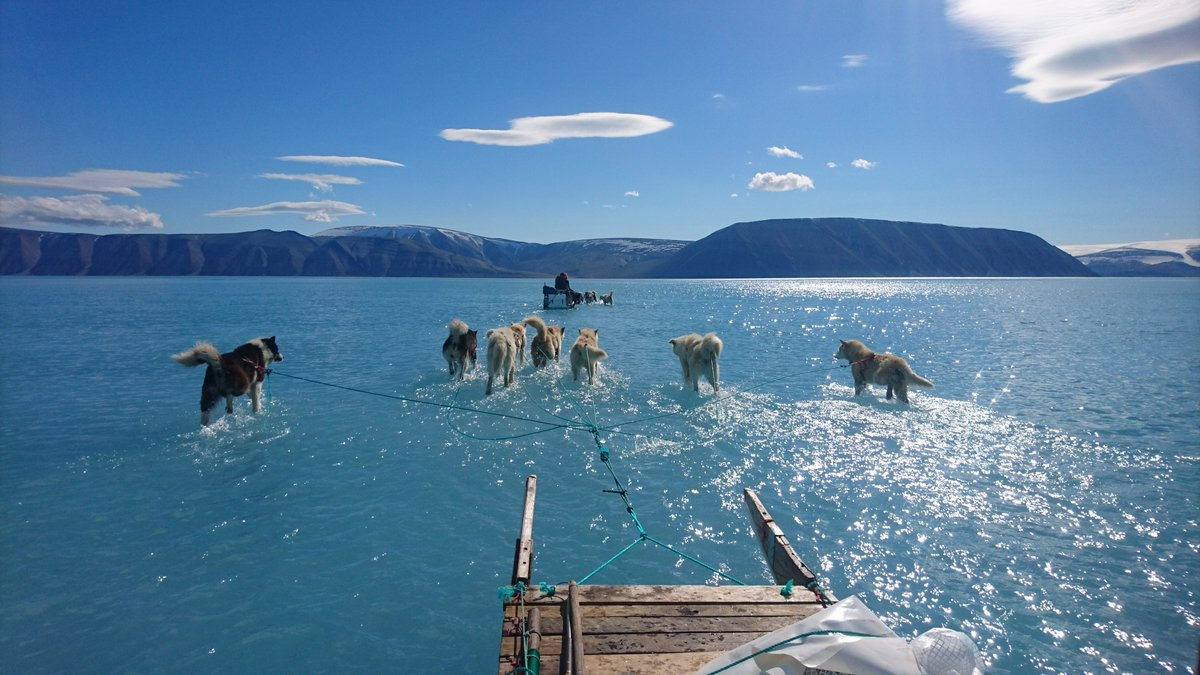 """Arctic Warming & Climate Change """"Should Be the Number One Urgent Conversation Right Now"""""""