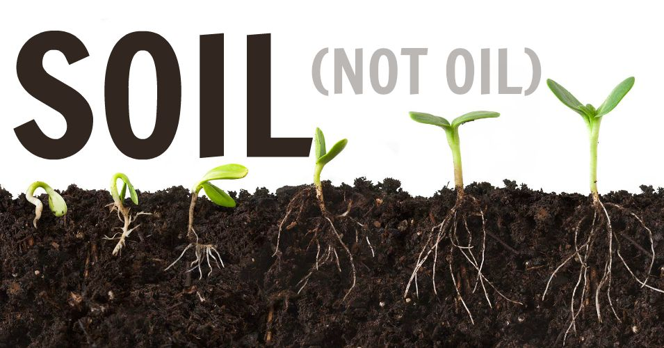 Soil as our salvation for Soil not oil